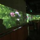 上海全息数字主题餐厅,打造就餐新体验