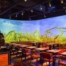绿茶3D全息餐厅Playking,美图看过来