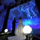 婚礼办出新花样,吕宋海鲜楼3D全息投影大厅震撼您的眼球