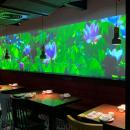 深圳溪游记5D全息餐厅升级改造