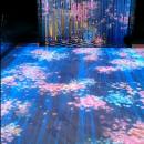 武汉nPLUS全息投影音乐餐厅,带你体验360度无死角的美好