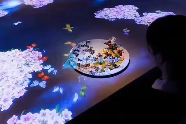开一家5D全息投影餐厅需要多少钱-博视界科技